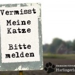 Vermisst_Katze