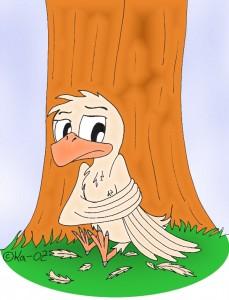 vogelcoloklein