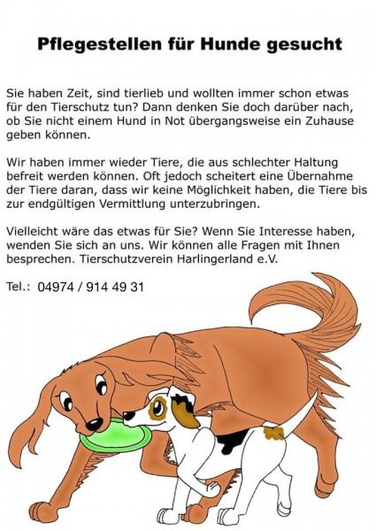 Pflegestellen_Hund_gesucht