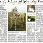 Bericht im Anzeiger für Harlingerland am 04.04.2015