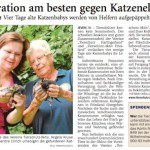 20150818_JW_Katzenbabys_Tierschutz-aktiv-Friesland