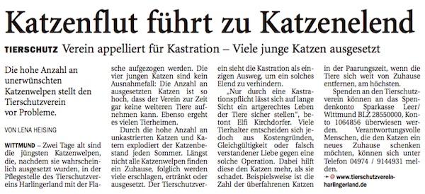 20150822_Harlinger_Katzenflut