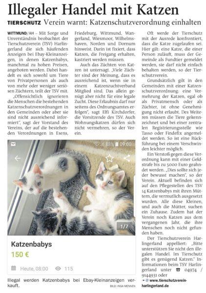 Artikel über illegale Katzenzucht
