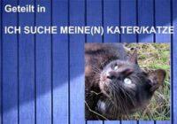 Vermisst in Wittmund